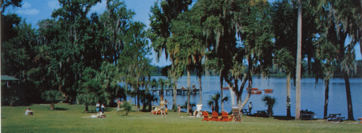 Color postcard of the shore of Lake Wauburg